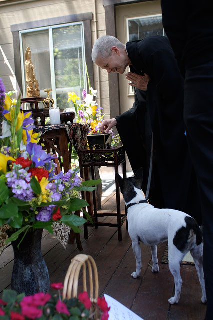 2012-pet-blessing-5
